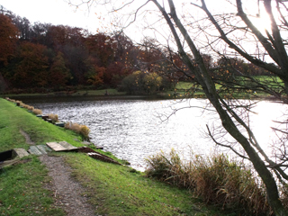 General view of the fishery, looking across Bowden Spring to the dam wall